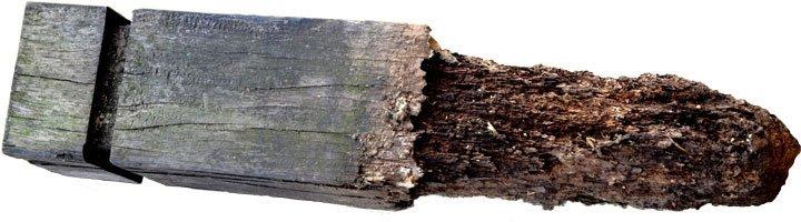 Rotten Wood Post