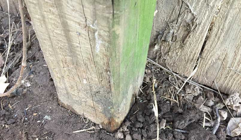 Wood Fence Post in Ground