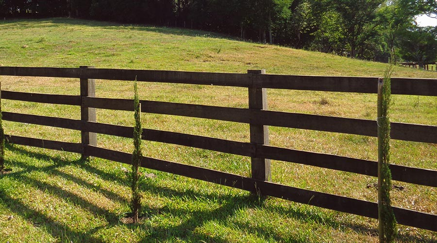 Wood Ranch Rail Fence