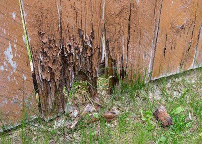 Rotten Fence Wood