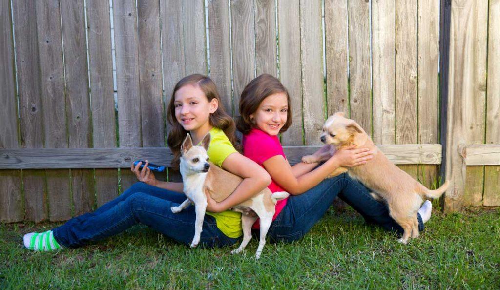Kids With Dogs Backyard Fence